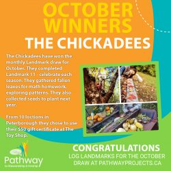 October2020_Chickadees