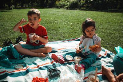 family-picnic-in-the-park-PXV97PG
